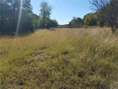 Erath County Residential Lots & Land For Sale: Tbd Sunfish Point