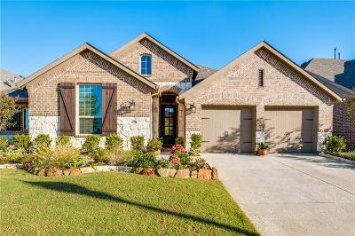 Little Elm Single Family Home For Sale: 9901 Trinity Drive