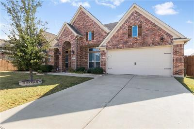 Little Elm Single Family Home For Sale: 2212 Riviera Drive
