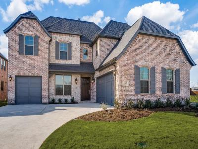 Frisco Single Family Home For Sale: 15069 Starry Night Lane