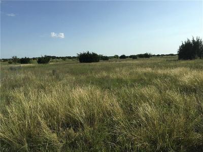 Erath County Farm & Ranch For Sale: Tbd Hwy 219 S 2 Highway