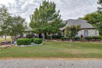 Gunter Single Family Home Active Kick Out: 139 Parkside Court
