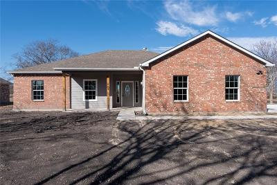 Nevada Single Family Home For Sale: 429 Collin Street