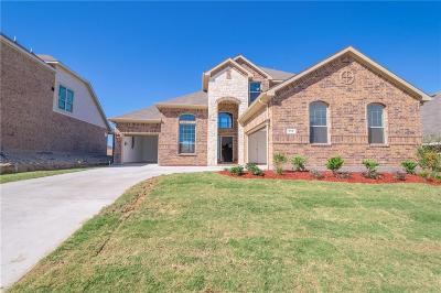Fort Worth Single Family Home For Sale: 413 Wild Onion Lane