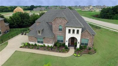 Gunter Single Family Home For Sale: 1409 Coyote Court