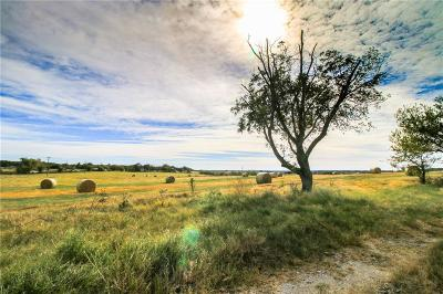 Weatherford Farm & Ranch For Sale: 4430 Tin Top Road