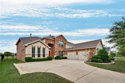 Rowlett Single Family Home For Sale: 10117 Fairway Vista Drive