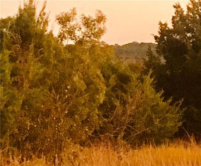 Erath County Residential Lots & Land For Sale: Tbd Hidden Lake