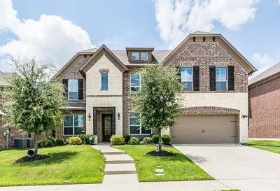 Mckinney Single Family Home For Sale: 713 Windy Hill Drive