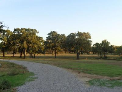 Wise County Single Family Home For Sale: 585 County Road 3592