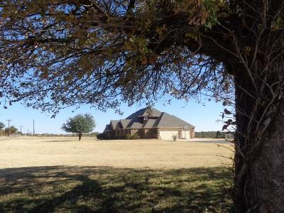 Wise County Single Family Home For Sale: 953 Hlavek Road