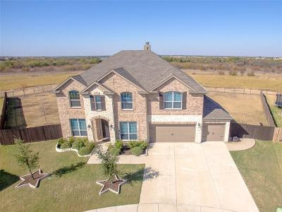 Little Elm Single Family Home For Sale: 2201 Hideaway Point Drive