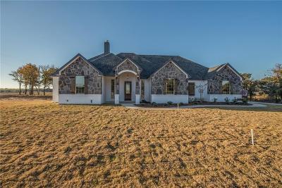 Millsap Single Family Home For Sale: 101 Chisum Drive
