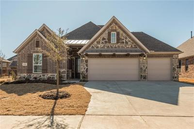 Prosper Single Family Home For Sale: 2901 Clearwater Drive