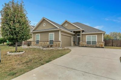 McKinney Single Family Home For Sale: 9600 Water Tree Drive