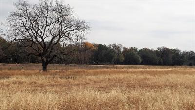 Weatherford Farm & Ranch For Sale: 5057 Fm 1189