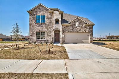 Denton Single Family Home For Sale: 9112 Conroe Drive