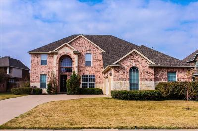 Grand Prairie Single Family Home For Sale: 2944 N Camino Lagos