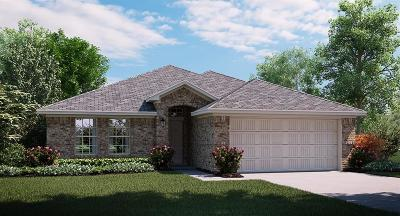 Frisco Single Family Home For Sale: 11600 Aquilla Drive
