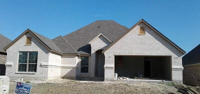 Aledo Single Family Home For Sale: 449 Sagebrush Drive