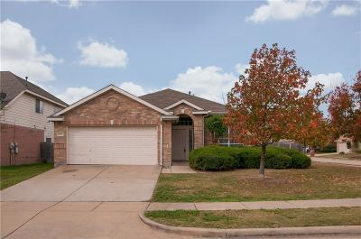 Arlington TX Single Family Home For Sale: $205,000