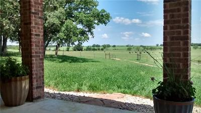 Comanche County Single Family Home For Sale: 125 County Road 152