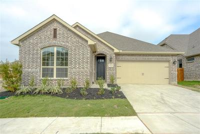 Single Family Home For Sale: 6516 Mandalay Court