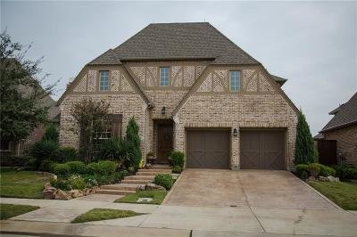 Irving Single Family Home For Sale: 735 Brookstone Drive