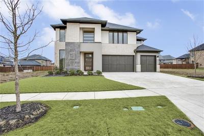 Frisco Single Family Home For Sale: 3708 Agnes Creek Drive