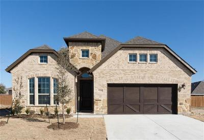 Fort Worth Single Family Home For Sale: 9701 Trailmap Drive