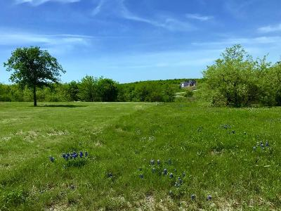 Grand Prairie Residential Lots & Land For Sale: 3115 Sanctuary Drive