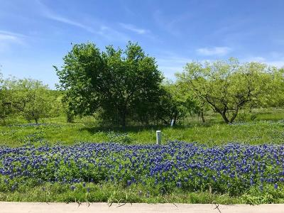 Grand Prairie Residential Lots & Land For Sale: 3119 Sanctuary Drive
