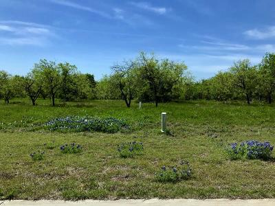 Grand Prairie Residential Lots & Land For Sale: 3131 Sanctuary Drive