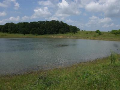 Clay County Farm & Ranch For Sale