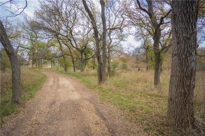 Horseshoe Bend Residential Lots & Land For Sale: Tbd Lipan Trail