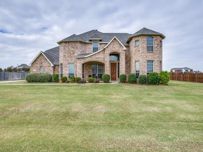Single Family Home For Sale: 961 Mallory Drive