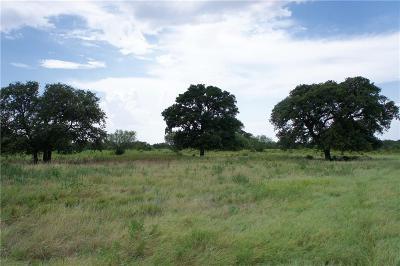 Brown County Farm & Ranch For Sale: 101a Fm 583 W