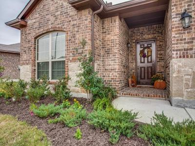 Single Family Home For Sale: 517 Delgany Trail