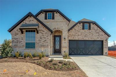 Little Elm Single Family Home For Sale: 5112 Pavillion Way