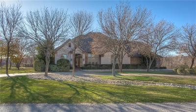 Fort Worth Single Family Home For Sale: 319 Silver Canyon Drive
