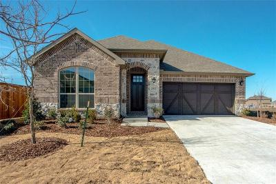 Prosper Single Family Home For Sale: 2001 Overton Place