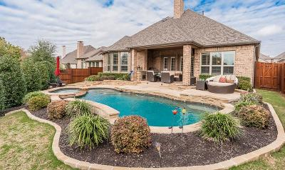 McKinney Single Family Home For Sale: 6505 Spring Wagon Drive
