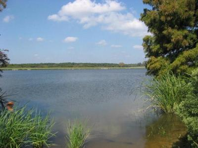 Athens Residential Lots & Land For Sale: 215 Wildlife Way