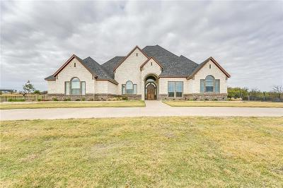 Weatherford Single Family Home For Sale: 166 Top Flight Drive