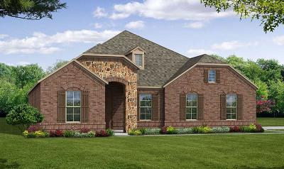 Prosper Single Family Home For Sale: 261 Darian Drive