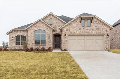 Prosper Single Family Home For Sale: 2261 Shadow Ridge
