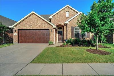 Little Elm Single Family Home For Sale: 704 Hummingbird Drive