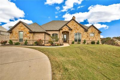Granbury Single Family Home For Sale: 1005 Lady Amber Court