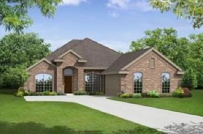 Fort Worth Single Family Home For Sale: 6425 Belhaven Drive