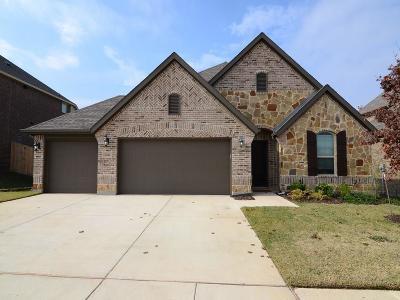 Little Elm Single Family Home For Sale: 1404 Heather Lane